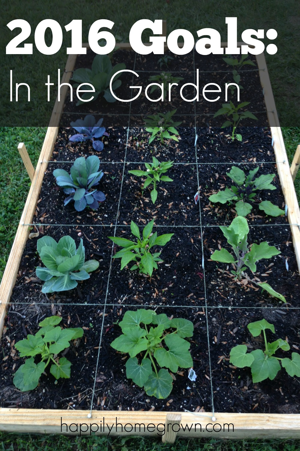 2016 goals in the garden