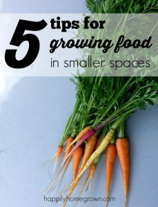 5 Tips for Growing Food in Smaller Spaces