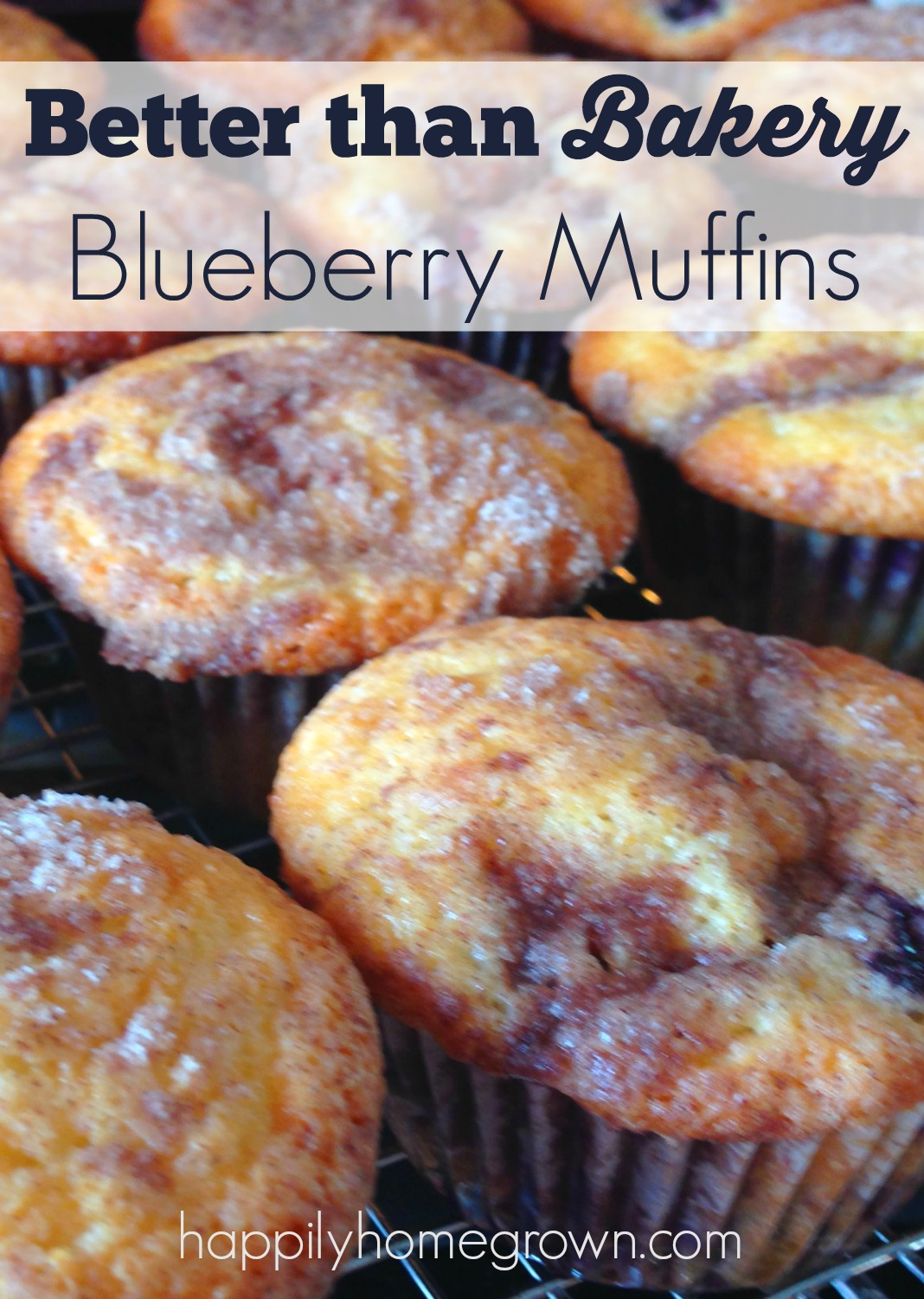 better than bakery blueberry muffins 2