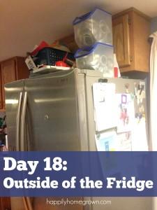 Day 18: Outside of the Fridge