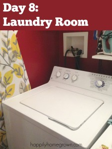 Day 8: Laundry Room