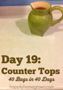 Day 19: Counter Tops