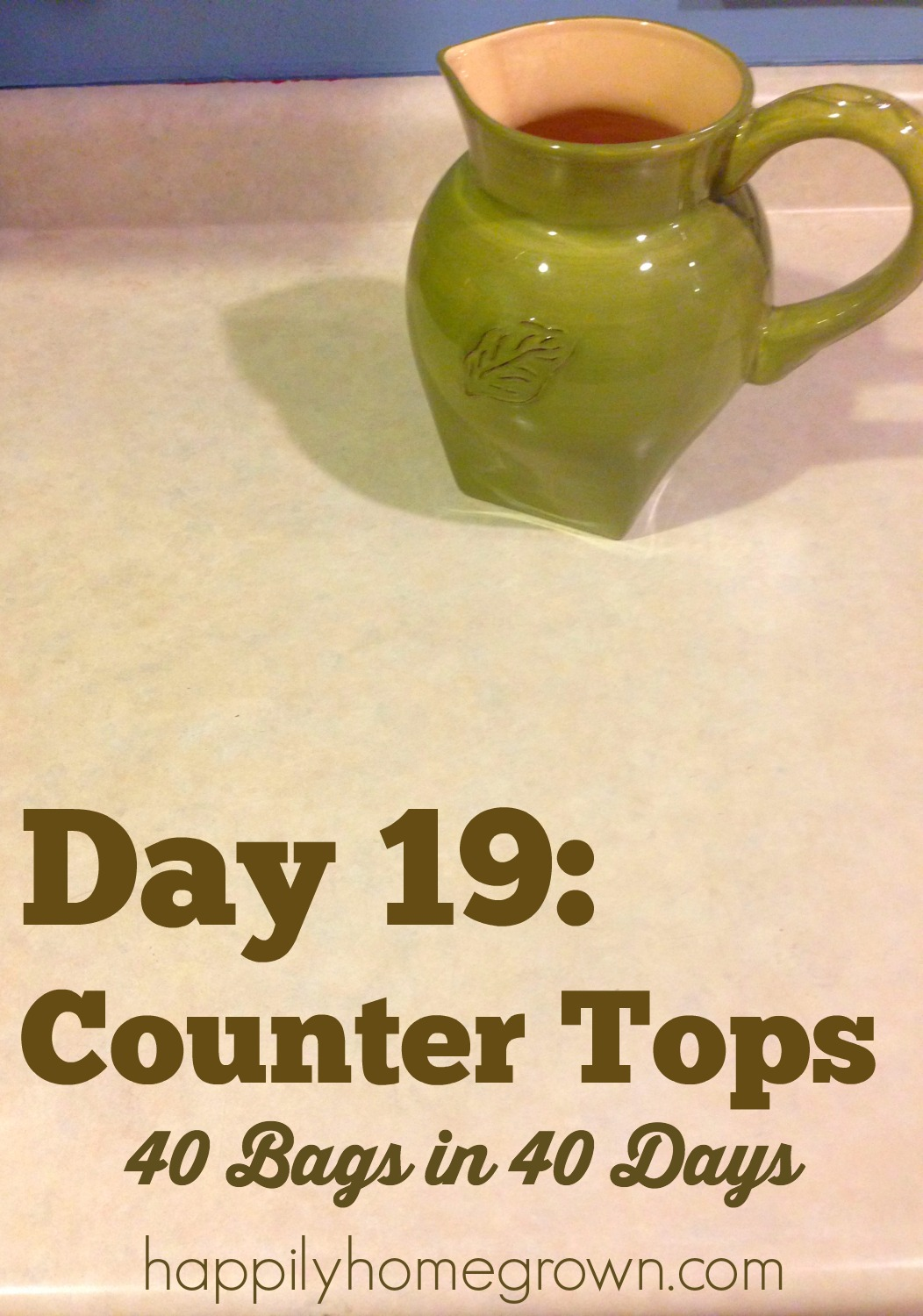 Day 19 counter tops