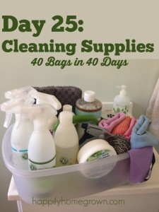 Day 25: Cleaning Supplies