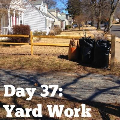 Day 37: Yard Work