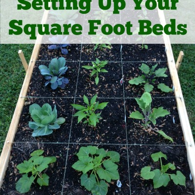Setting Up Your Square Foot Beds