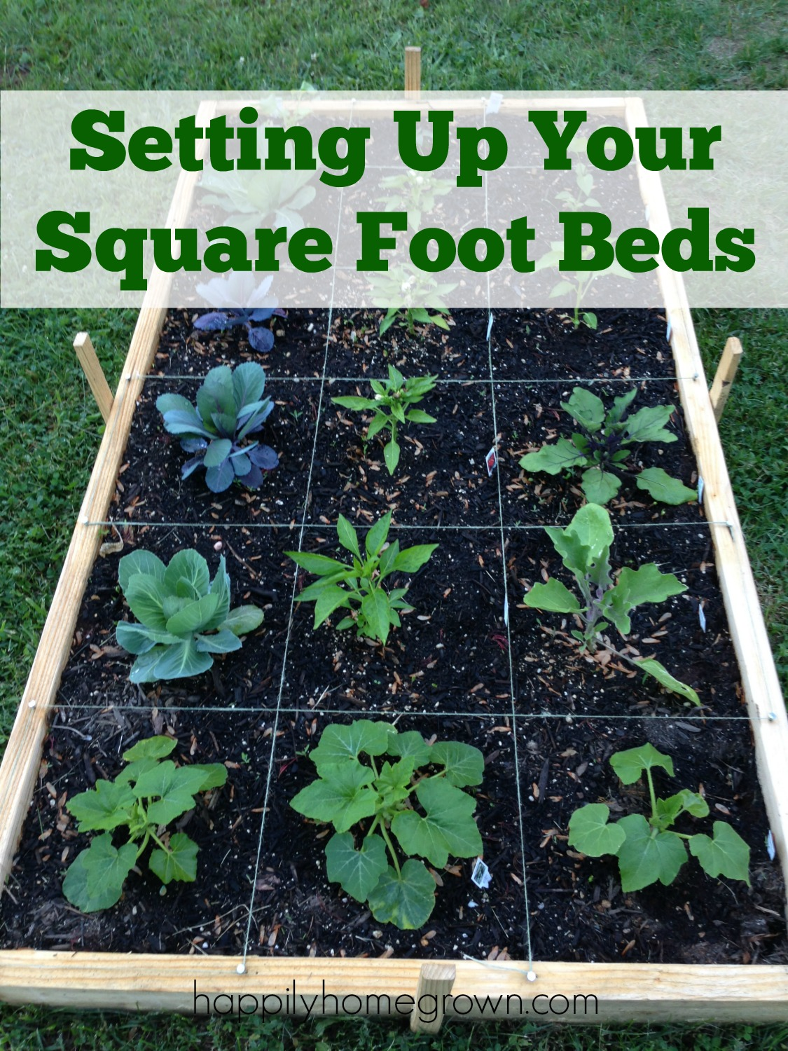 Setting Up Your Square Foot Beds - The whole idea behind Square Foot Gardening (SFG) is to grow more in less space. This saves you time, money, and resources while producing an abundance of produce!