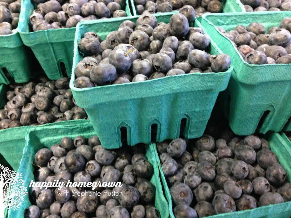 Here are my tips for buying produce in bulk - including stock up prices, my favorite local farms, and the best time of year to get your favorites.