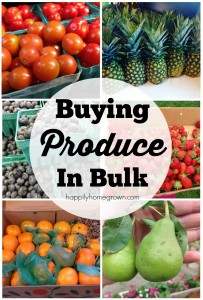 Buying Produce in Bulk