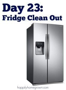 Day 23: Fridge Clean Out