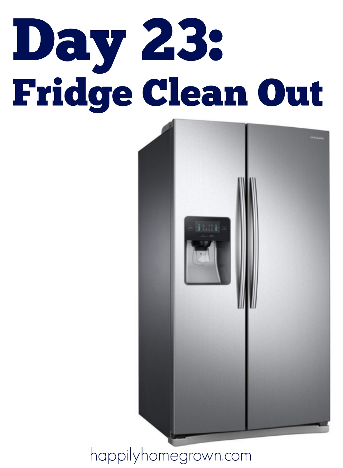 Fridge clean out is the chore we all know that we need to do, but none of us want to do. Here are a few tips to make it easier.