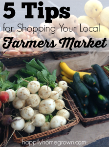 The next best thing to growing your own food is supporting your local farmers. Here are 5 tips for shopping your local farmers' markets.