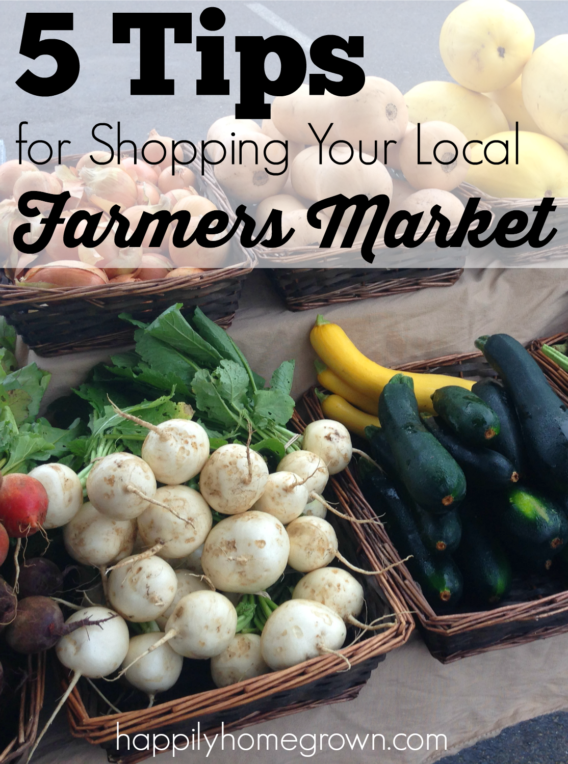 The next best thing to growing your own food is supporting your local farmers. Here are 5 tips for shopping your local farmers' market.