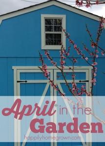 April In The Garden