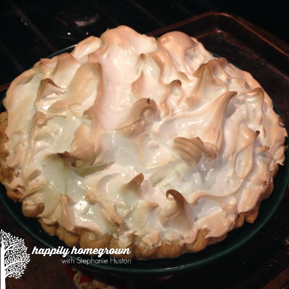 One of my favorite spring flavors is lemon, and nothing says spring better than my grandma's lemon meringue pie. I know you'll love the ease of this recipe!