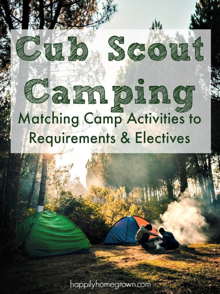Camping and outdoor skills are an integral part of the Cub Scout, and later the Boy Scout, experience.  You can not advance through the ranks without spending time outdoors.  Cub Scout camping is at the pack level, which means scouts in kindergarten through fifth grade, and their families are attending these outings.
