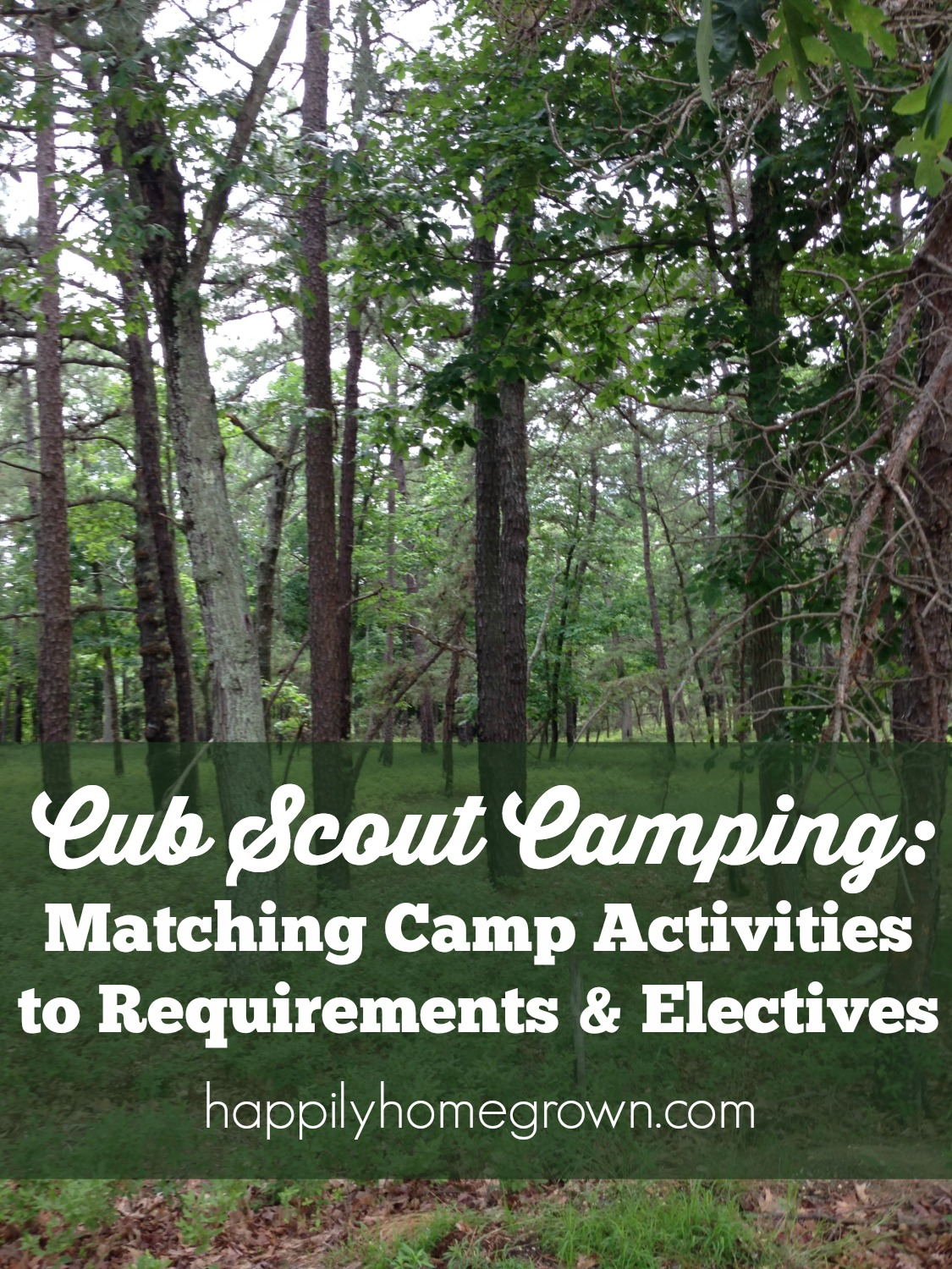Camping with your Cub Scout pack is fun, but its a lot of work to make sure the scouts are meeting their requirements. Here's a cheat sheet to make it a bit easier for you.