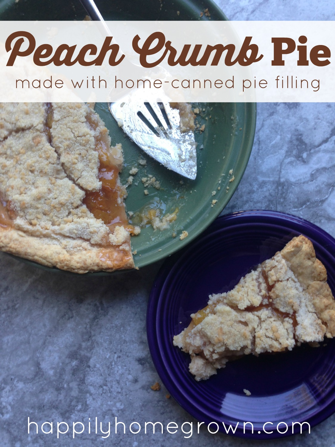 Here in eastern PA it is peach season! That means its time to capture summer in a jar with our homemade peach pie filling, and what better way to enjoy that than in a peach crumb pie.