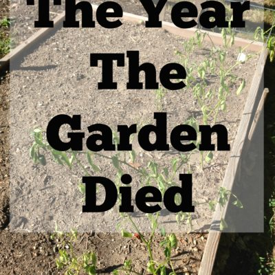 The Year The Garden Died