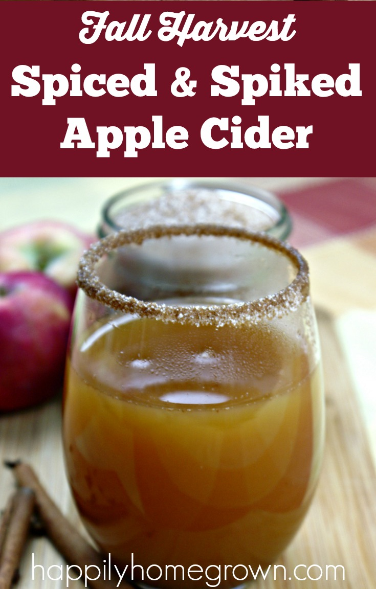 Spiced & spiked apple cider tastes like apple pie, with that little bit of extra heat in the back that you get from whiskey. Its the perfect fall cocktail!