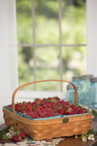 berry-harvest-basket