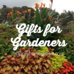 Whether you are shopping for Christmas or any other celebration, these gifts for gardeners are sure to be a hit!
