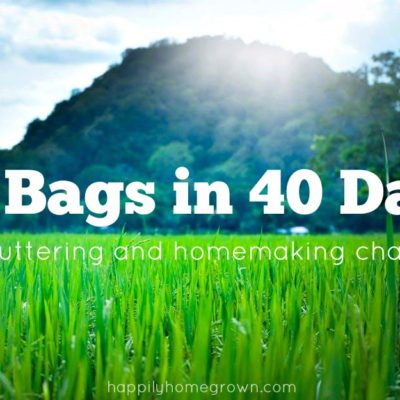 40 Bags in 40 Days: Week 8