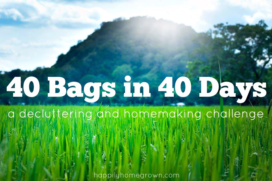 The 40 Bags in 40 Days Challenge is a weekly link up for bloggers to share their posts on spring cleaning, organization, and decluttering. If you're a blogger, we would love for you to participate! If you don't blog, you can still check out the featured posts and new posts below.