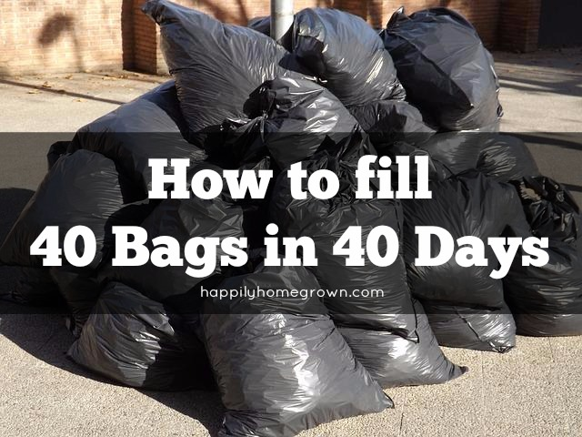 Trying to declutter & clean your home is like trying to eat an elephant. You have to do it bite by bite, nibble by nibble. Welcome to the 40 Bags in 40 Days Challenge.