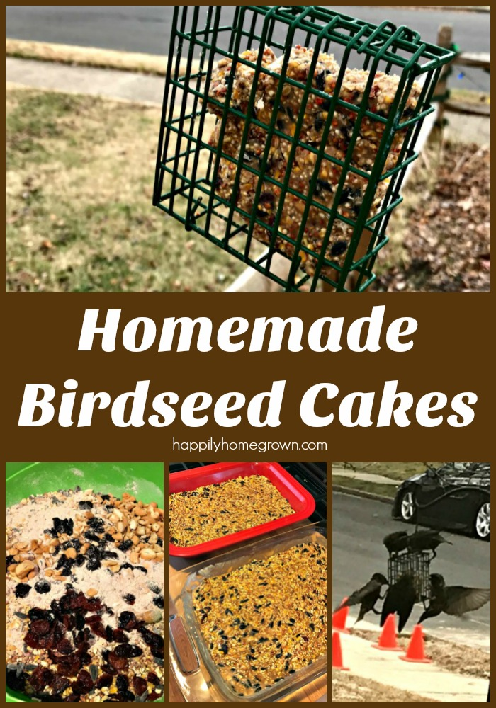 Learn how to make these quick and easy homemade birdseed cakes and keep your feathered friends visiting the yard all season long!
