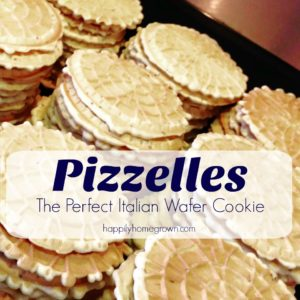 Pizzelles are a thin, crisp, Italian wafer cookie flavored with anisette. They are a great Christmas cookie, but now we make them year round!