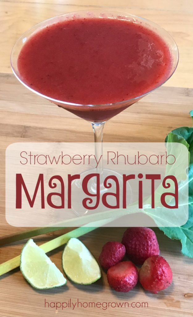 Time for a cocktail that it's a bit different from the every day. Strawberry Rhubarb Margaritas! A little sweet. A little tart. Frosty and creamy at the same time. Absolute perfection!