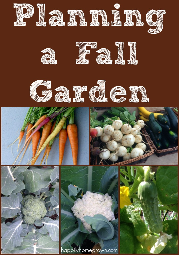 "I know what you're thinking, ""A fall garden? It's only July!""  But now is exactly when you should be thinking about your fall garden."