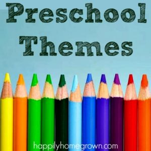 A Year of Preschool Themes