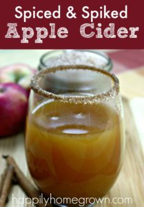 Spiced & spiked apple cider cocktail tastes like apple pie, with that little bit of extra heat in the back that you get from whiskey. Its the perfect fall cocktail!