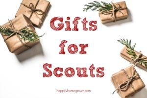 Gifts for Scouts