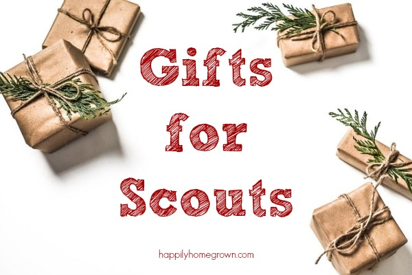While holiday gifts always include toys & clothes, in our house they also have scout related gifts. Here are 5 gifts perfect for the scouts in your family.