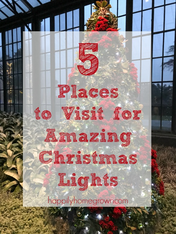 My favorite family tradition is traveling around the region to check out the Christmas lights. Here are 5 Places to Visit for Amazing Christmas Lights.