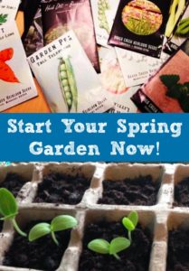Start Your Spring Garden Now!