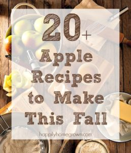 20+ Apple Recipes to Make This Fall