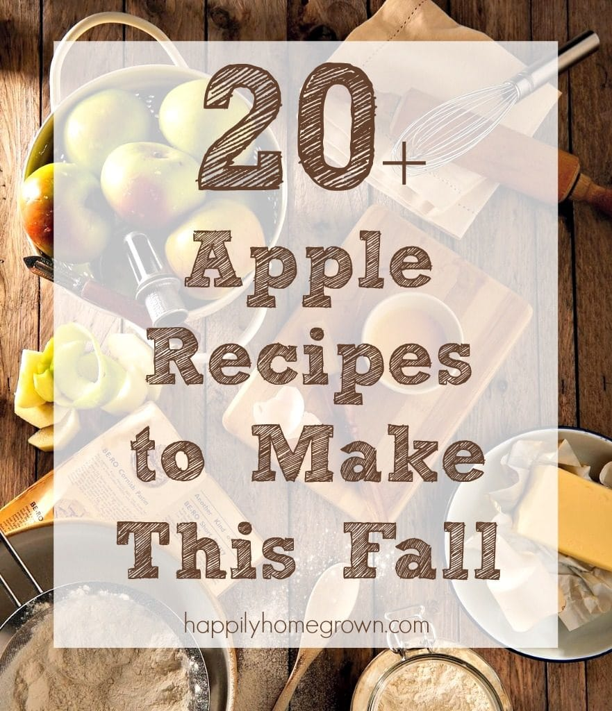 When I think fall flavors, I think appleand warm spices. Move over pumpkin spice, apples are where it's at! Check out these 20+ apple recipes to bring fall flavors to your kitchen.