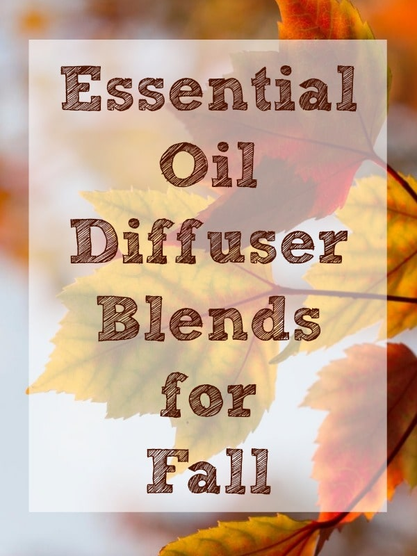 These essential oil diffuser blends are perfect for fall and making your home smell amazing. Try out a few different blends this fall, and discover your home's signature fall scent.