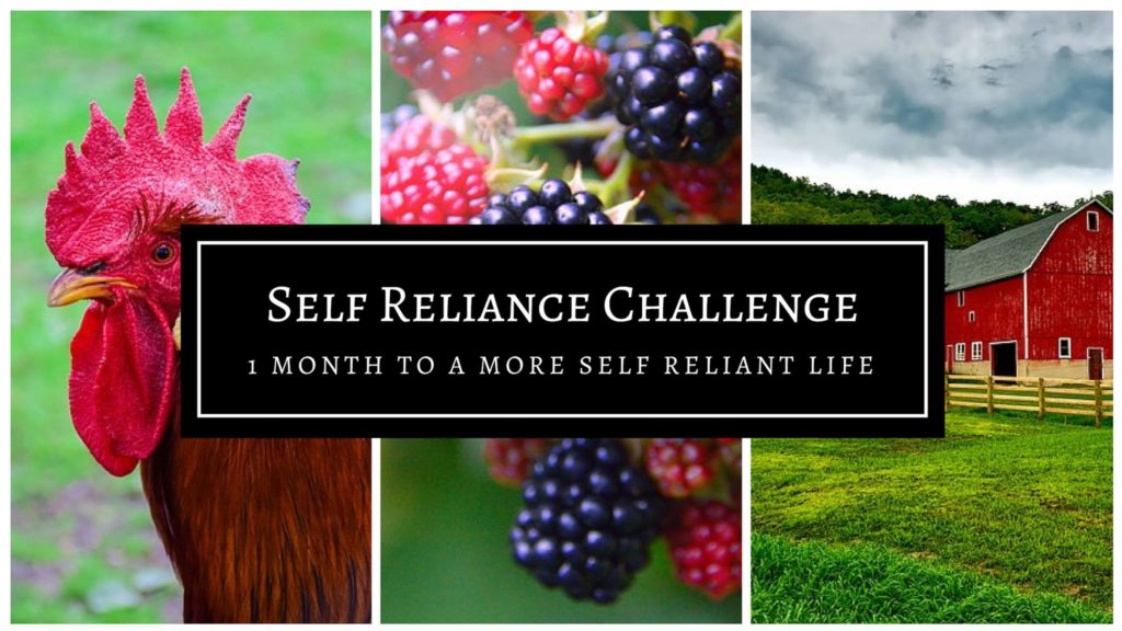 Make a resolution to be more self reliant in 2019! Being more self reliant helps save money and increase your confidence and skills. I've pledged to share my self reliance posts, tips, and plans with you in January 2019 as I challenge myself to learn new skills!