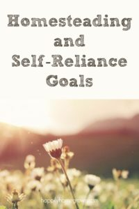 My overall goal is to be more self-reliant in 2019 than we were in 2018.  Self-Reliance means we will be able to do more for ourselves and save money in the process.