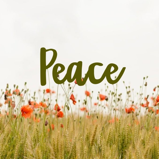 "My Word for 2019 - PEACE I'm coming to terms with a lot of little things that I have no control over, so the driving force for me in the coming year is the question, ""Will it bring me peace?""  Peace of mind.  Peace in my heart.  And most importantly peace in my life."