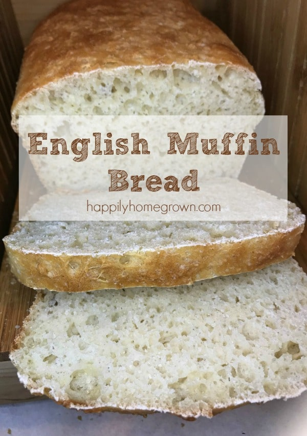 This quick and easy, no-knead, yeast bread tastes just like a toasted English muffin.  Perfect for breakfast with jam & butter, or even for making your favorite breakfast sandwiches.