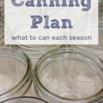 Want to know when the best time is to can? Check out my Canning Plan to see the possibilities, and get inspired to preserve your own food at home.