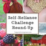 Being self-reliant helps save money & increase your confidence and skills. Here are the best posts from the challenge as a reference to our readers.